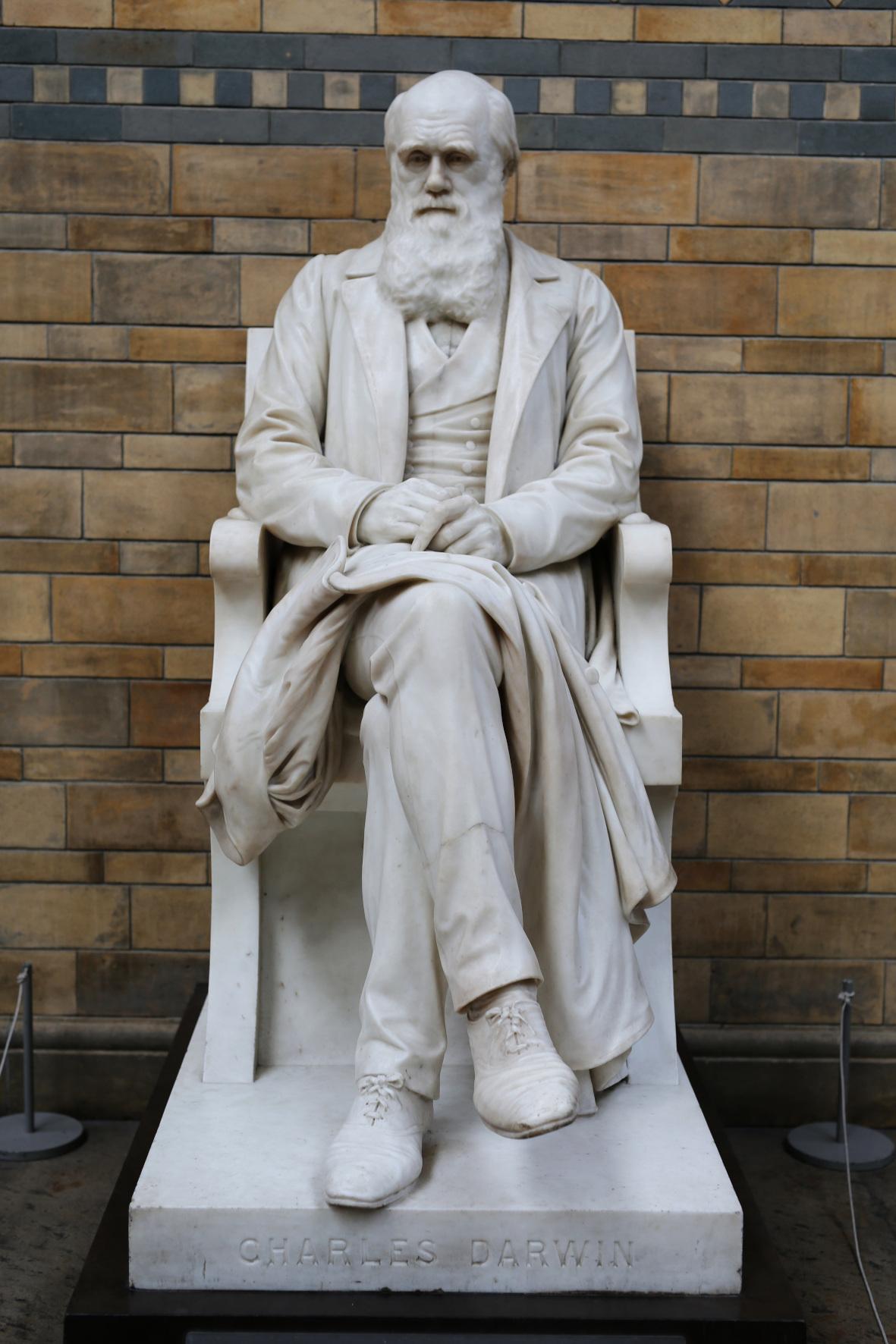 """Wenn man heute den Begriff """"Evolutionstheorie"""" hört, denkt man in erster Linie an Charles Darwin, Foto: © CC0 / pixabay.com"""