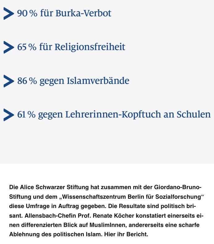 screenshot Alice-Schwarzer-Stiftung